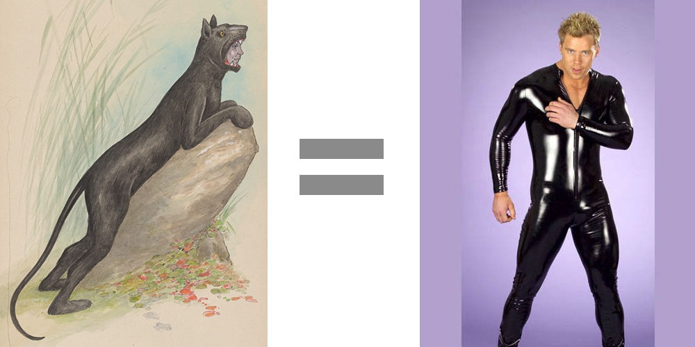 Black Panther Vintage Costume